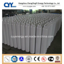 High Quality and Low Price Liquid Nitrogen Oxygen Argon Carbon Dioxide Seamless Steel Cryogenic Cylinder