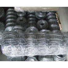 Electro оцинкованной железной проволоки сетки крупного рогатого скота фехтования (anjia-528)