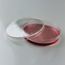 35*15 mm Petri Dish