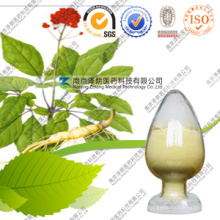 2016 Hotsale Panax Ginseng Stem Leaf Extract Powder