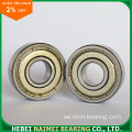 Radial Deep Groove Ball Bearing