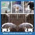 Promotion Cadeau certifié Straight Auto Open Transparent PVC Clear Pet Dog Rain Umbrella Fancy Items