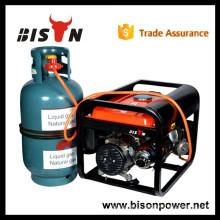 LPG Gas Engine Power China LPG 6.5kva Generator