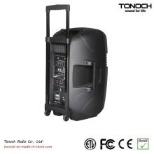 Fabrik Versorgung 10 Zoll Kunststoff Trolley Outdoor Lautsprecher mit Batterie