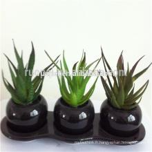 Plantes succulentes artificielles vertes bon marché mini avec le pot