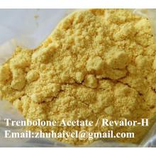 99,9% Trenbolon Cyclohexylmethylcarbonat / Parabolan CAS 23454-33-3 Steroidpulver