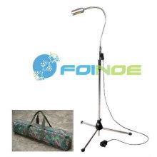 Lumière dentaire portative LED (modèle: FNP20L) (homologué CE)