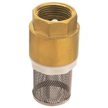 Brass spring strainer check valve