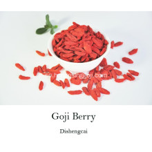 New Crop Goji Berry 2017 Organisk Goji Berry