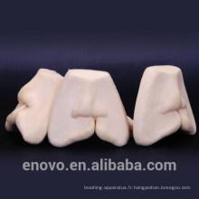 TOOTH15 (12588) Modèles de formation à la suture des lèvres fendues