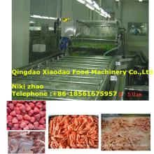 Gefrorenes Fleisch / Meeresfrüchte / Fruit Thawing Machine