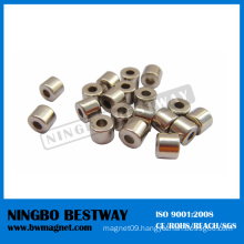 NdFeB Magnet Ring Shape Neodymium Magnet