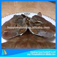 Fornecedor de caranguejo de corte fresco congelado de baixo preço