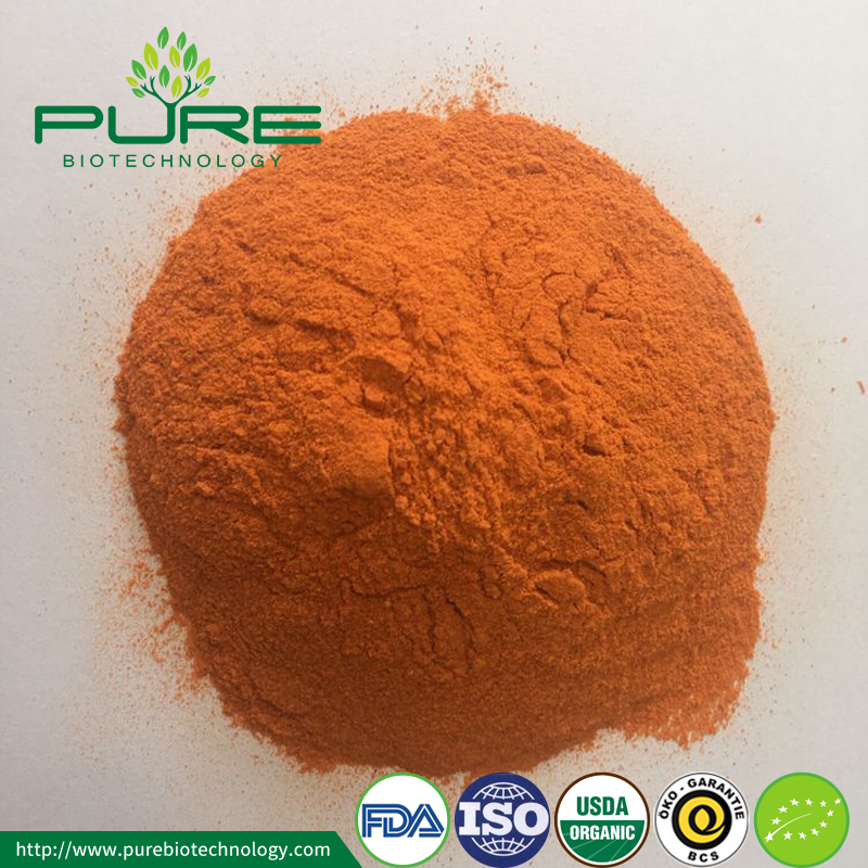 Organic Goji Berry juice powder