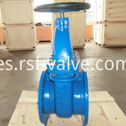 Bs5163 Type B Pn25 Dn250 Gate Valve