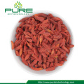 New Arrived Dried Red Goji Berry High Nutritional