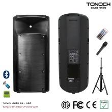 Plástico Dual 15 polegadas caixa de som para o modelo THX215UB