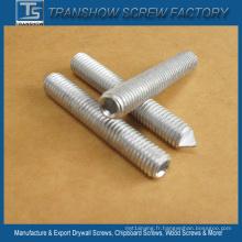 Vis de réglage en acier au carbone DIN913 DIN914