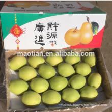 Year 2016 New Season Shandong Pears