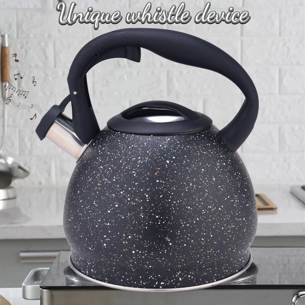 Black Durable Color Stainless Steel Whistling Teapot