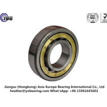 Cylindrical Roller Bearings with The Brass Cage (NJ2316M)