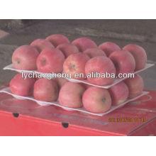 2013 новых урожая Yantai fuji apple для продажи