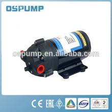 DP 12V 24v Mini Water Pump Diaphragm Pump