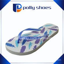 New Women′s Girl Thong Flip Flop Sandals Purple Fuchsia 36