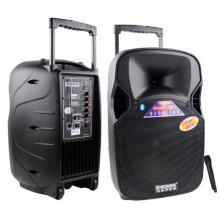 Altavoz plástico portátil de la música de 12inch Bluetooth con el micrófono VHF F87