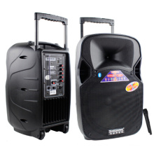 12 дюймов портативный Пластиковые музыка спикер Bluetooth с микрофоном VHF F87