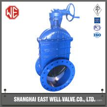 Fluoroplastic gate valve