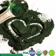 Grosir Top Grade Organik Spirulina Powder