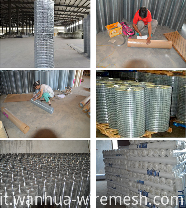 welded wire mesh packing
