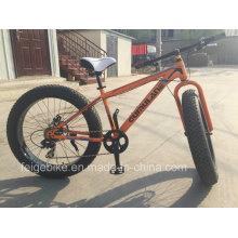 Bicicleta trasera de la bicicleta de la grasa de la velocidad 8 (FP-MTB-FAT04)