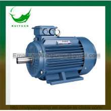 Ce Approved Three Phase Cast Iron Asynchronous Electric Motor for Industrial