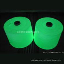 Glow dans le fil foncé / fil lumineux / fil photoluminescent