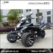 CEE Trike de corrida de gasolina com pneu de 12 polegadas 200cc 3 rodas motocicleta