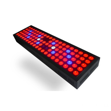 300W LED Grow Light Untuk Rumah Kaca Full Spectrum