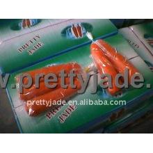 China exportar zanahoria fresca
