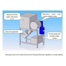 Microwave Vacuum Testing Machine