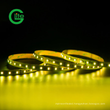 3years Warranty LED Light Stripsmd5050 RGBW 60LED 19.2W Ra90 LED Strip DC24 LED Light Strip