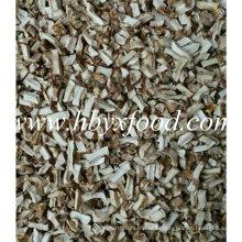 Granulé de champignons Shiitake séché Spawn