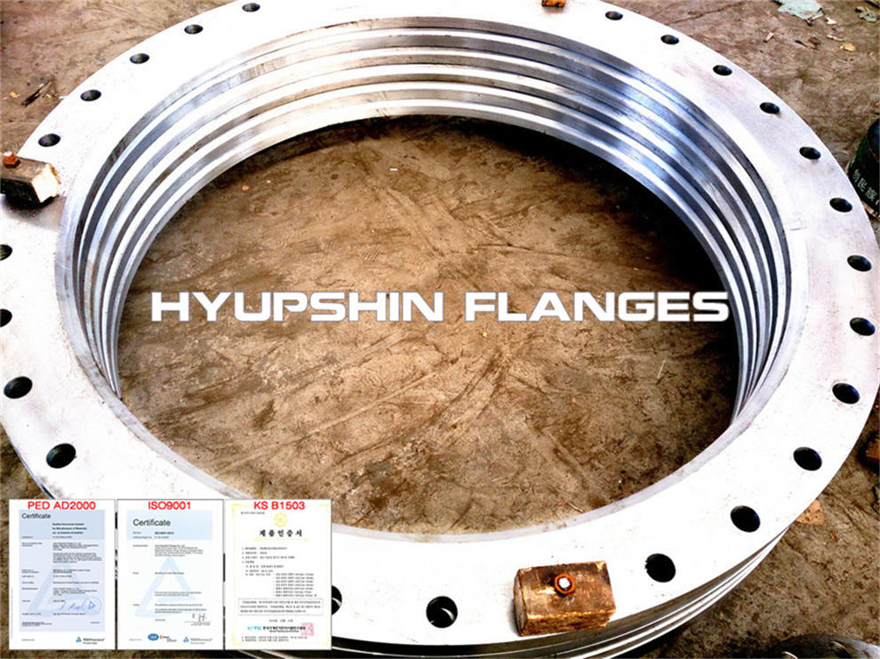 Hyupshin Flanges Lapped Loose Pn16