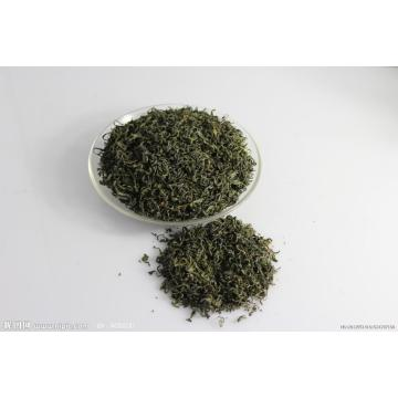 EGCG Extract in Green Tea 10~99% HPLC