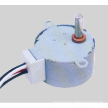 AC Synchronous Motor (49TDY-F)