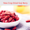 Analisis Gizi Goji Berry