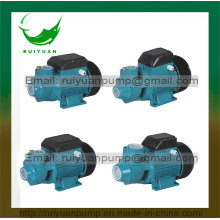 Qb60/Qb70/Qb80 Water Bomba Brass Impeller Copper Wire Vortex Pump