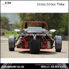250cc Motor Engine Ztr Trike Roadster Tricycle Vehicles