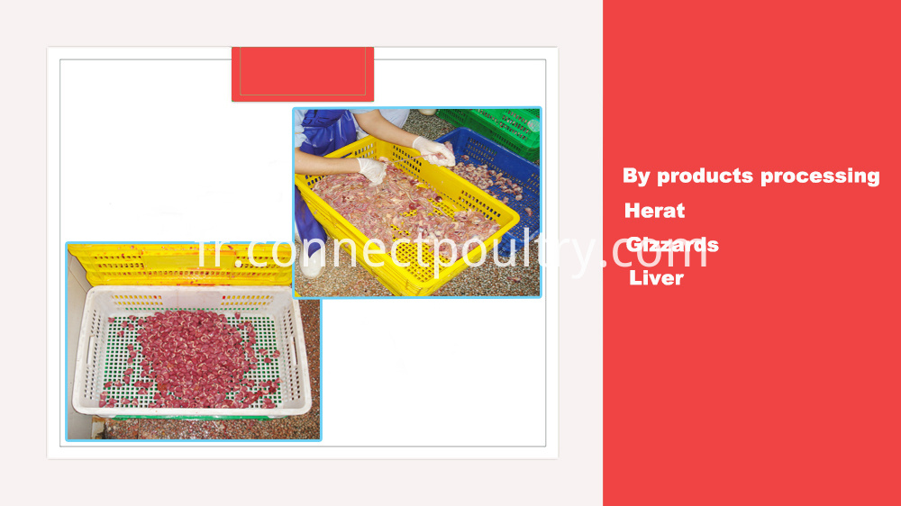 quail by products processing