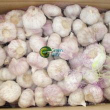 Fresh Garlic/White Garlic/Normal Garlic